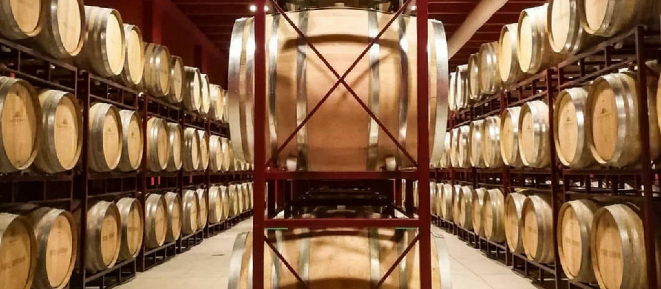 Photo for: Castorani- Fine Italian Winery Based in Abruzzo
