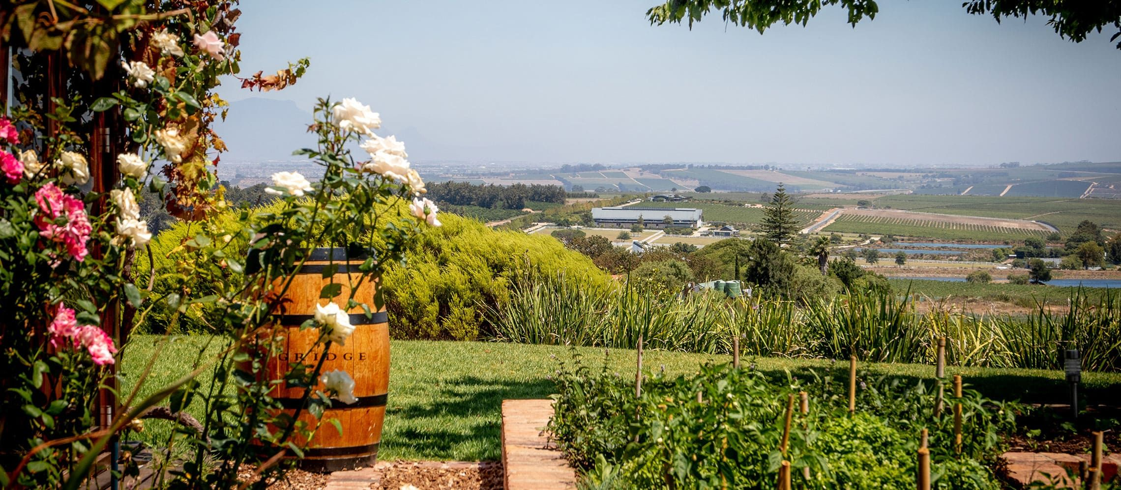 Photo for: Winery Day Road Trip Around London In COVID-19